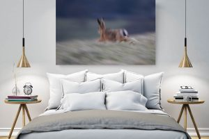 Hare in Flight | Wall Art