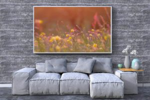 May Meadow | Wall Art