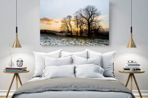 Winter Gold | Wall Art