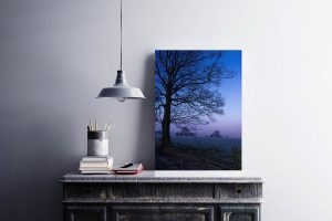 Tree in Blue | Wall Art