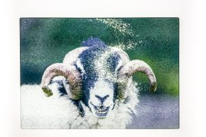 Laughing Tup | Glass Chopping Board