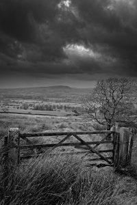 Wild Gate | KTSD-10