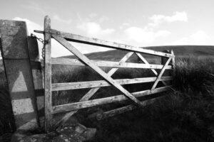Winter Gate | KTSI-1