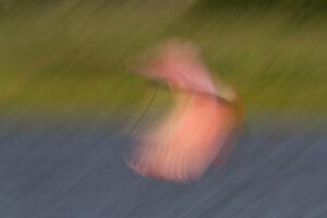 Pink Blurr | AB-60