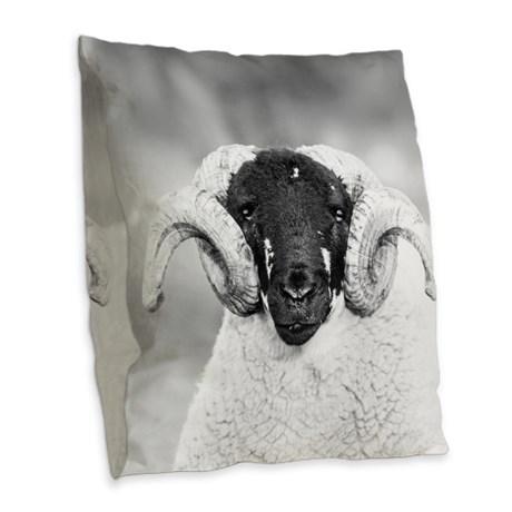 Throw Cushion   Look