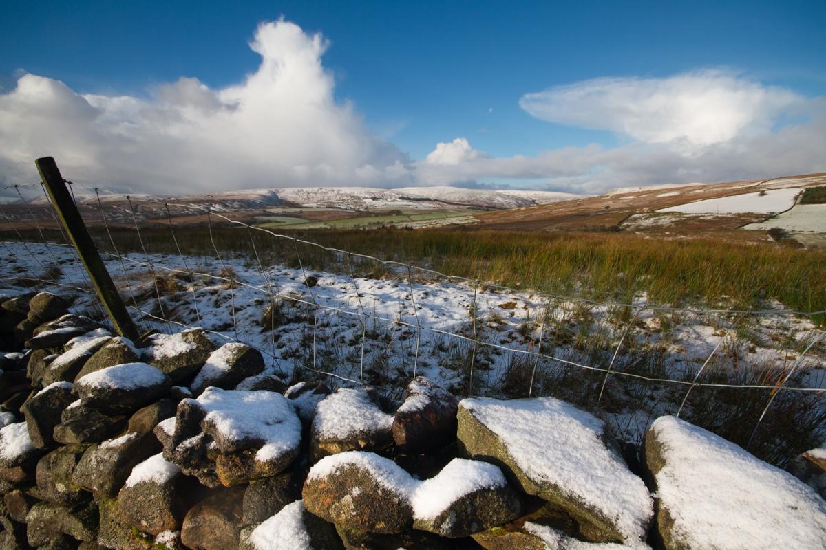 November Snow | KTSI-2083