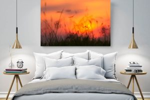 Sunset Burning| Wall Art