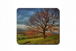 Autumn Tree Cork Placemat 2