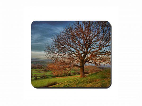 Autumn Tree Cork Placemat 2