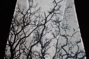 Winter Trees | Chiffon Scarf