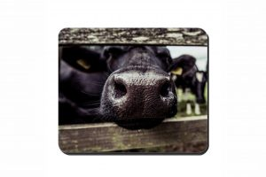 Nosey Cow Cork Placemat 2