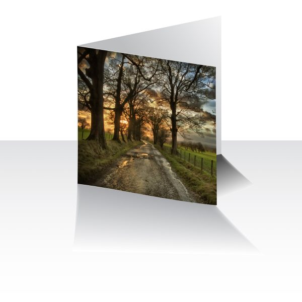 Pendle Path Greeting Card