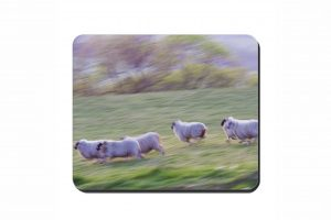 Running Sheep Cork Placemat 2