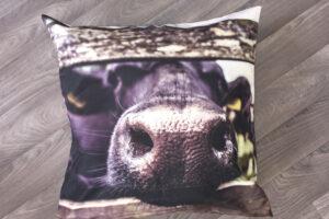 Throw Pillow | Nosy Cow