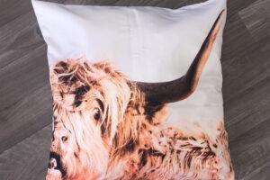 Throw Pillow | Highland Cow