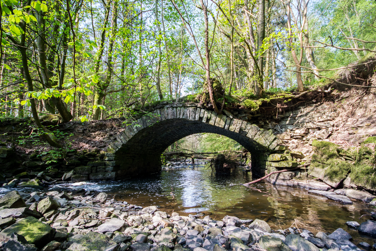 Troll's Bridge KTSI-2131