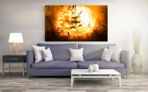 Willow Fire | Aluminium Print