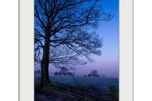 Blue Dawn | Mounted Print