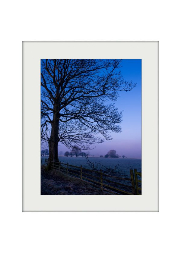 Blue Dawn | Mounted Print