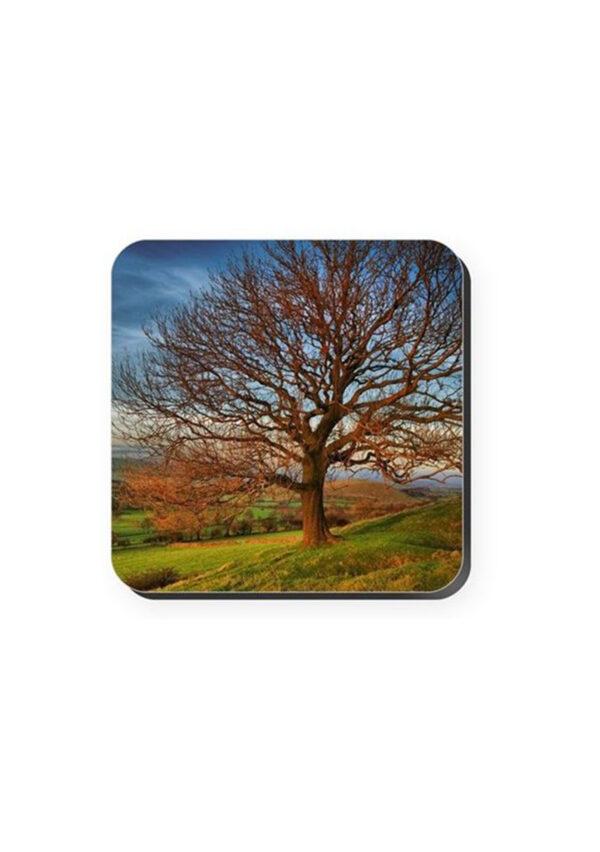 Autumn Tree | Coaster