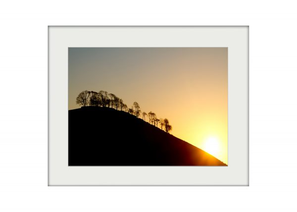 Dale Silhouette | Mounted Print