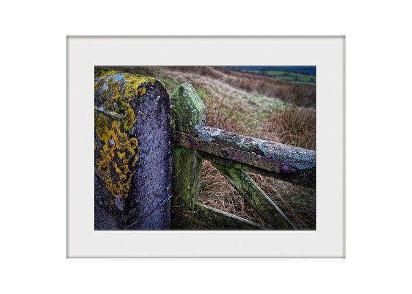Living Gate | Mounted Print