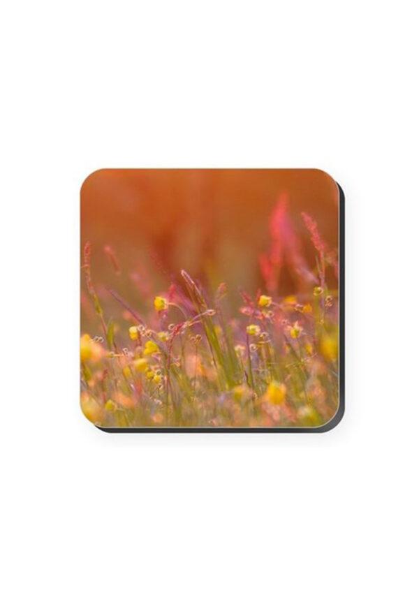 May Meadow Coaster