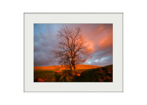 Red Pendle | Mounted Print