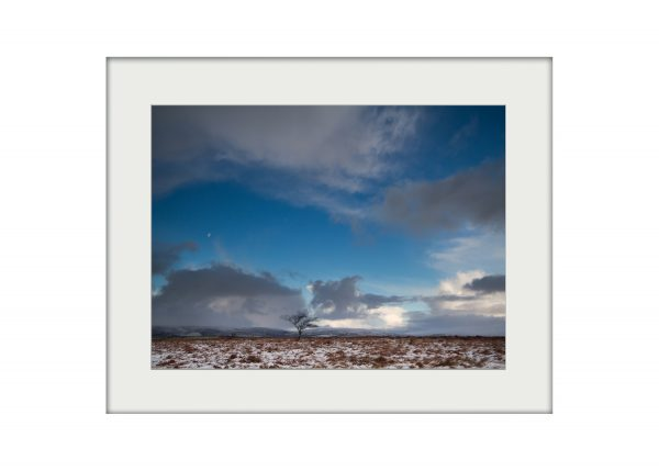 Winter Field | Mounted Print
