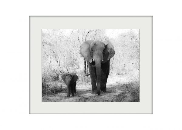 Mother and Child | Mounted Print