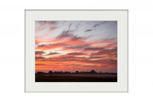 Busanga Dawn | Mounted Print