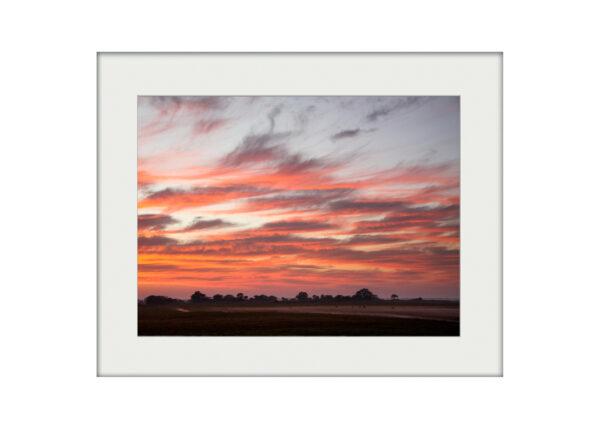 Busanga Dawn | Mounted Print