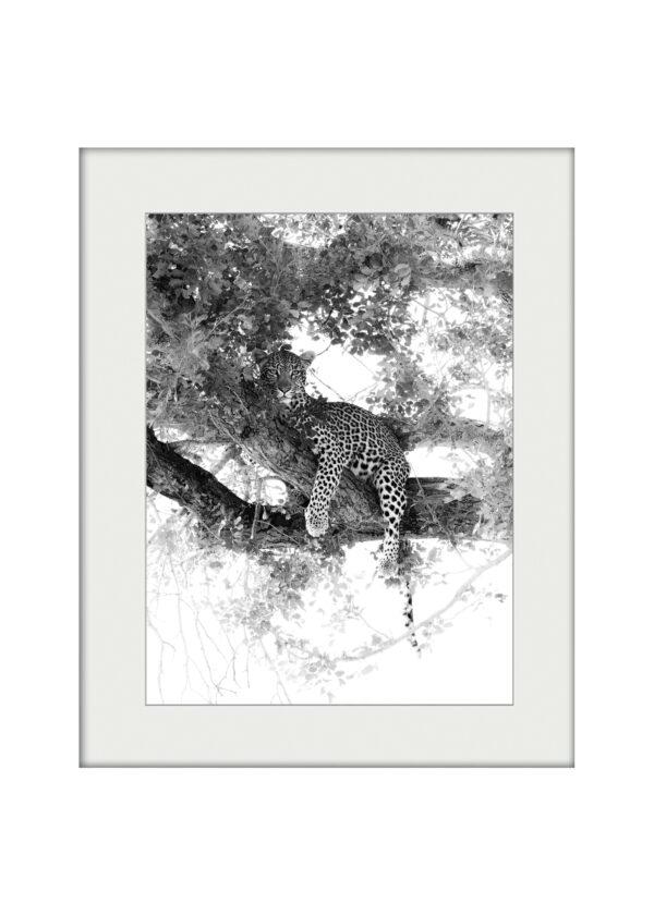 Timbavati Girl | Mounted Print