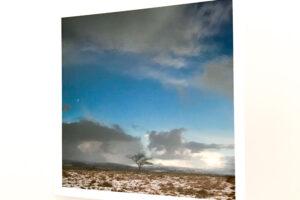 Greeting Card | Winter Field