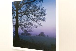 Greeting Card   Blue Dawn