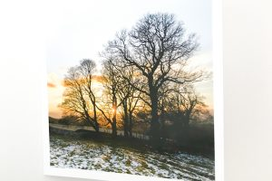 Greeting Card | Winter Gold