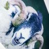 Laughing Tup | Glass Chopping Board Detail