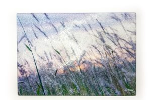 Willows | Glass Chopping Board