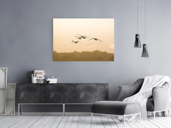 Swan FLight Mockup