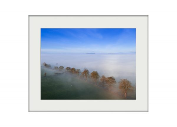 Mearley Mists Mounted Print