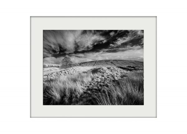 Pendle Fields Mounted Print