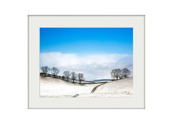 Winter Path Mounted Print