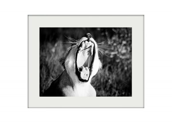 Big Yawn A3 Mockup