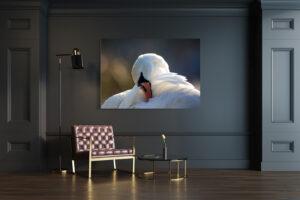 Mockup Alabaster Swan