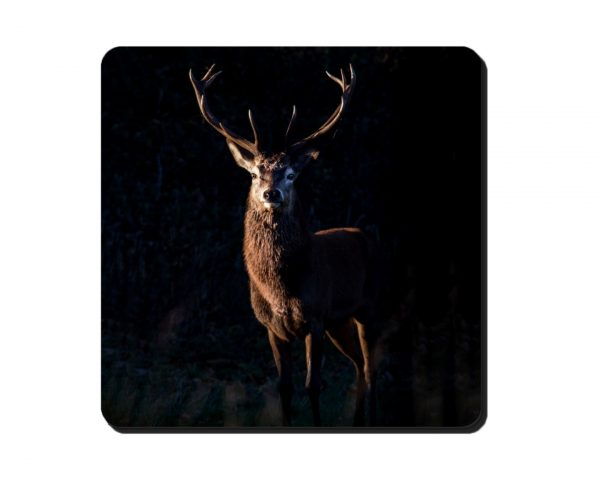 Coaster Stag