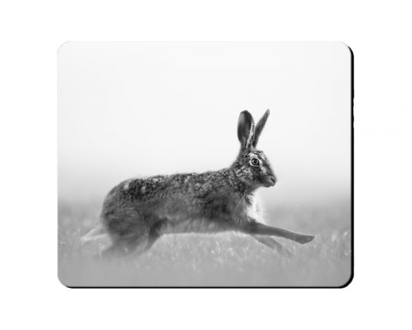 Placemat Galloping Hare