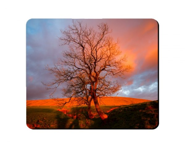 Placemat Red Tree on Pendle Mockup