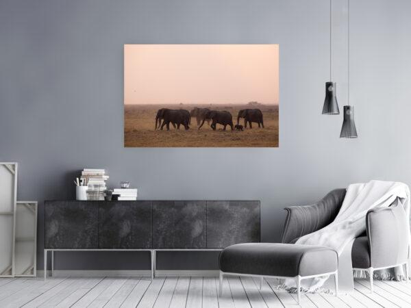 Elephant Dusk Mockup