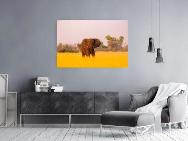 Okavango Giant Mockup