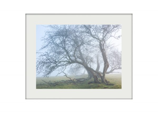 Fogscape _ A3 Mounted